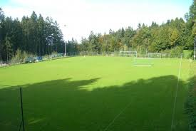 Fußballplatz.jpg