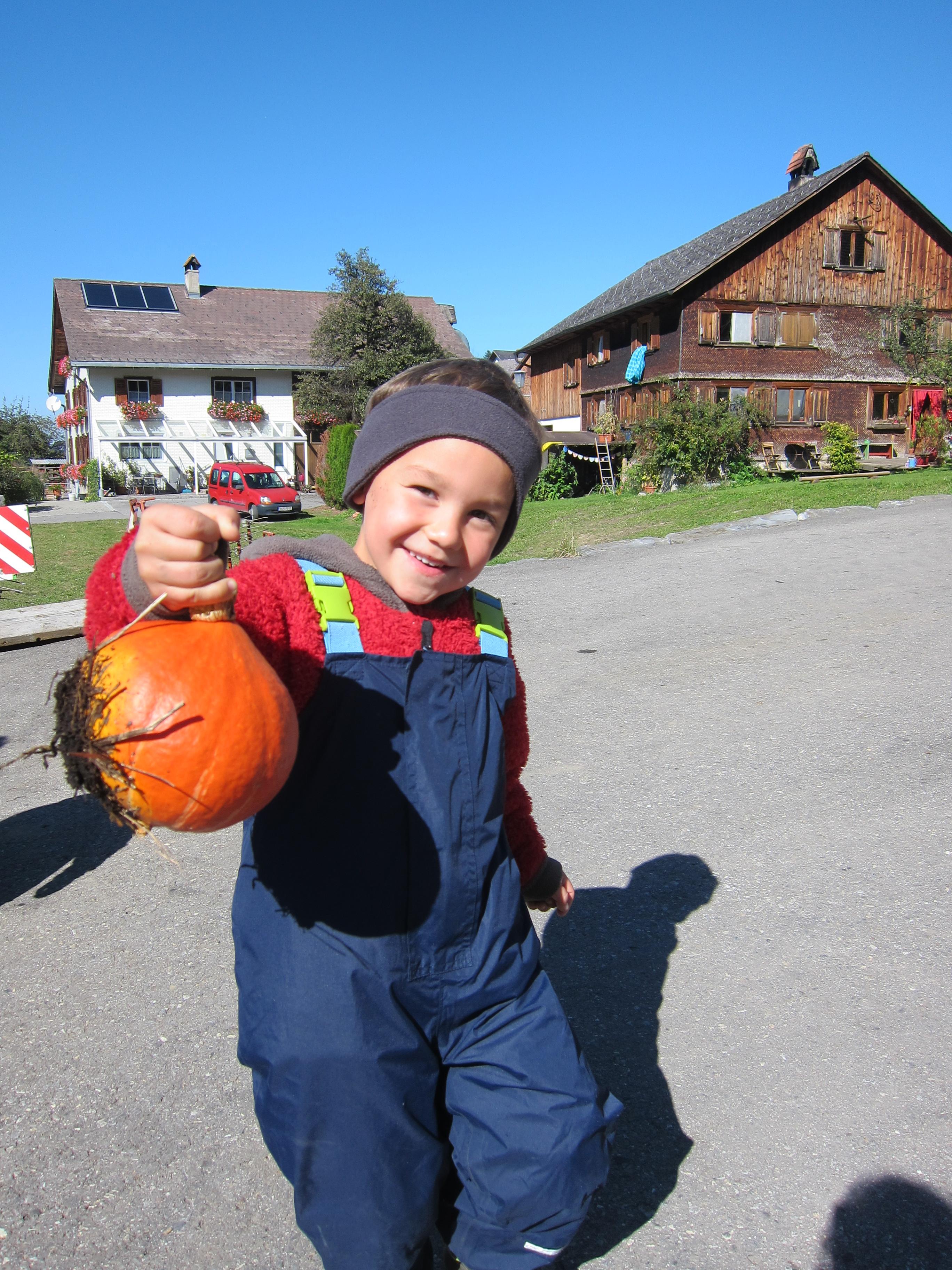Kürbis ernten_Sept15 (29).JPG